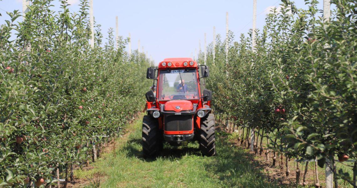 farmer - Traducere în română - exemple în engleză   Reverso Context